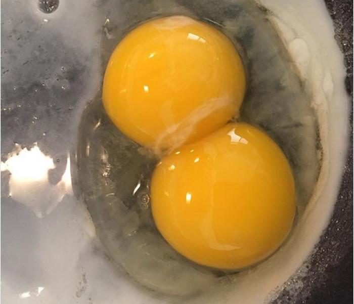Blizanačko jaje